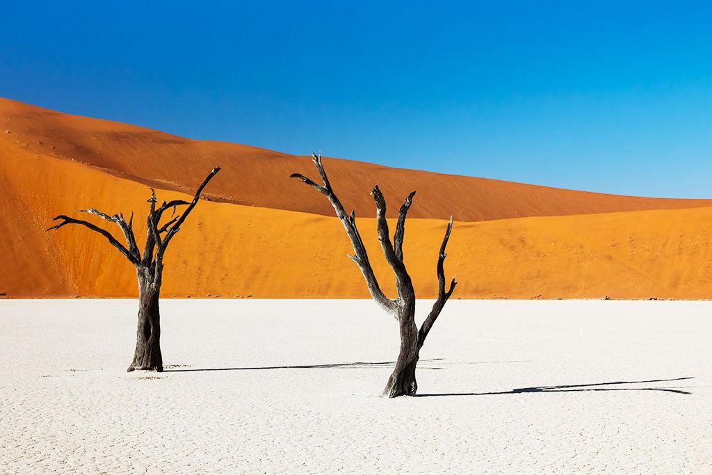 Circuit L'Essentiel de la Namibie 3*